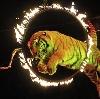 Цирки в Барнауле